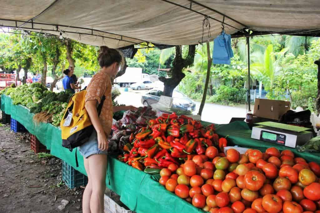 Charlie at Costa Rica farmers market