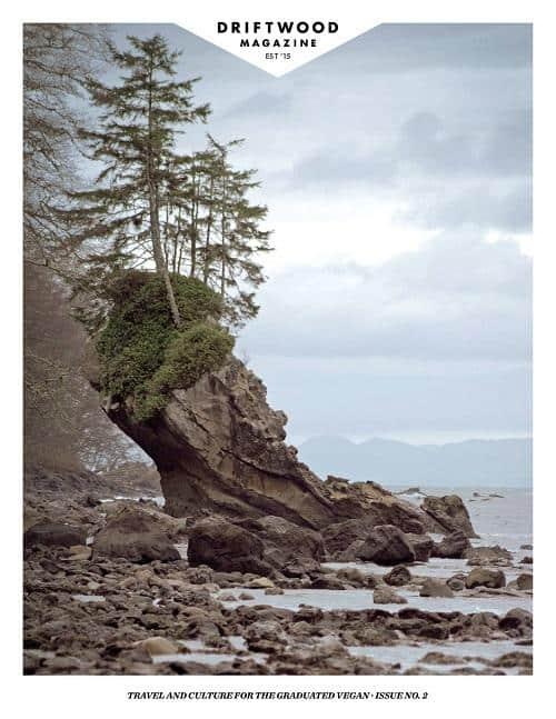 Driftwood magazine, Issue 2