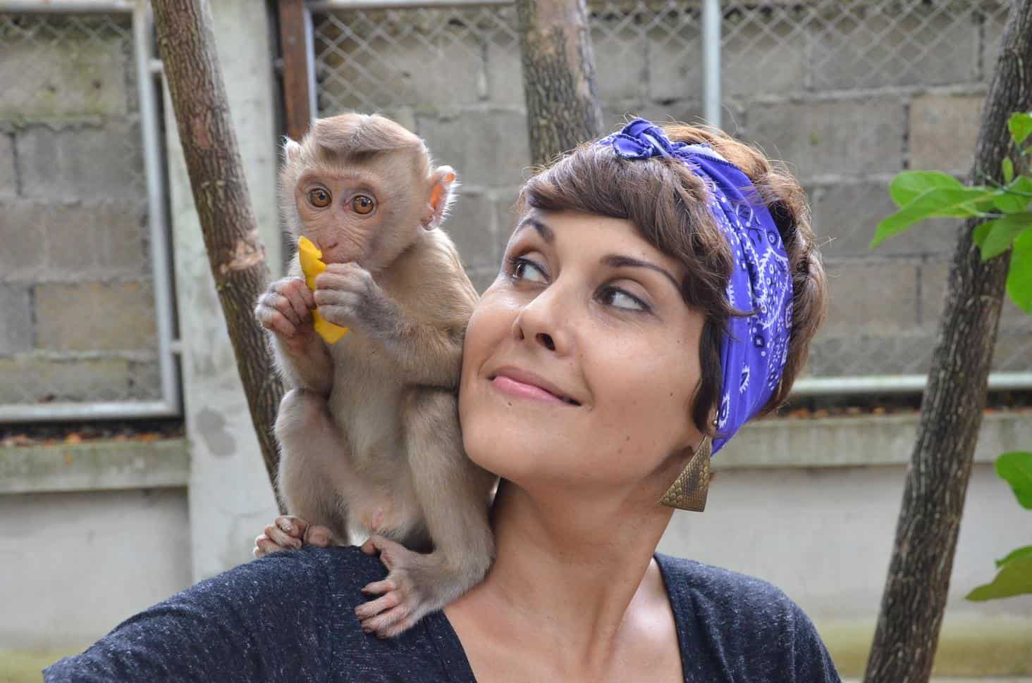 Hanging out with George the Monkey at ENP, Chiang Mai, Thailand (Photo by Mindful Wanderlust)