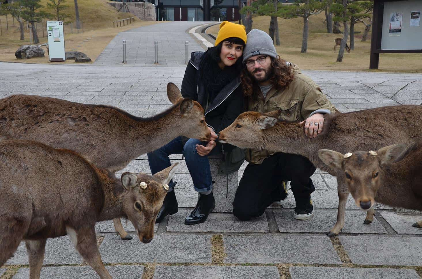 Us in Nara, Japan with the beautiful and friendly Sika Deer (Photo by Mindful Wanderlust)