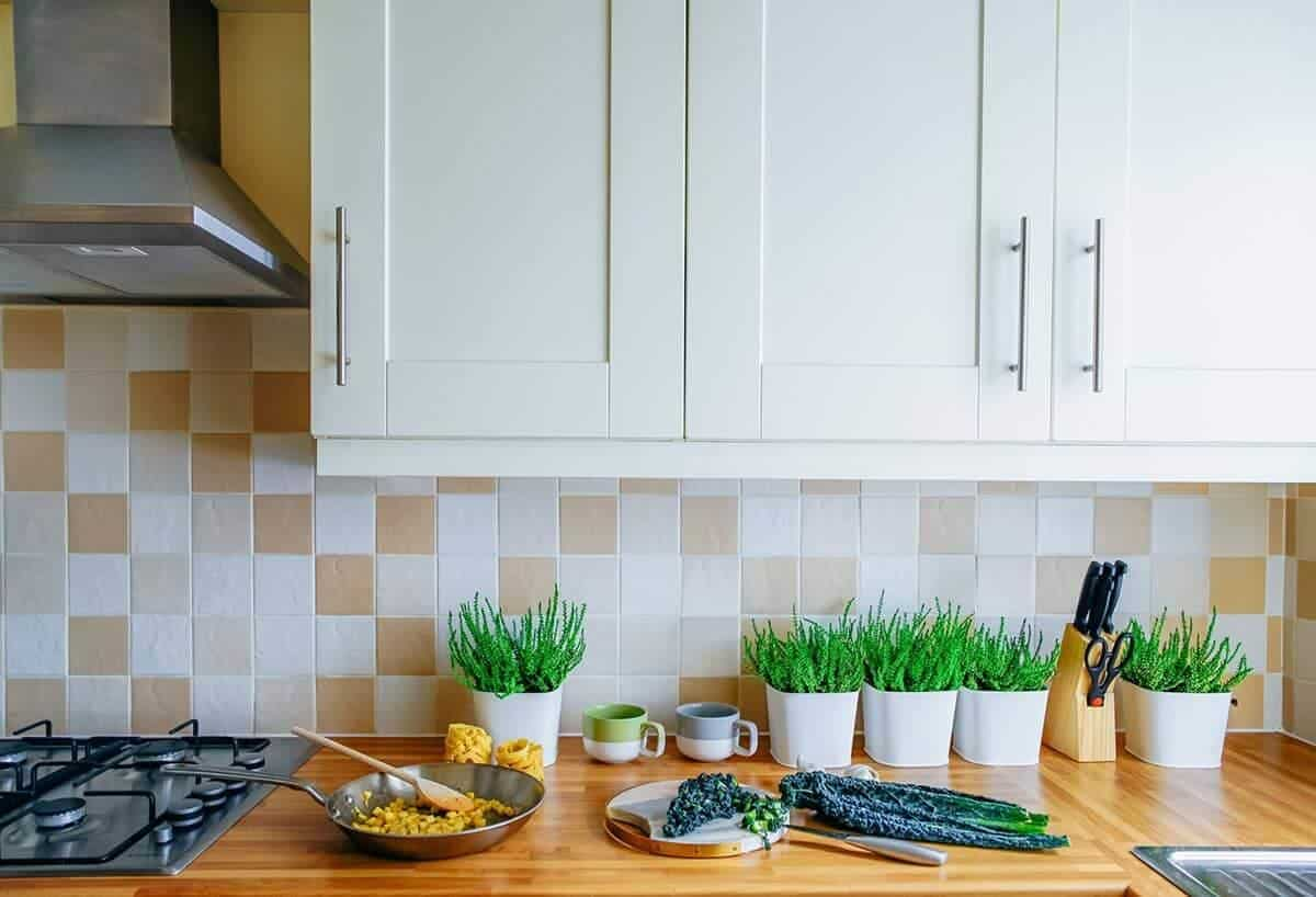 Vegan kitchen tools 29 essentials you need