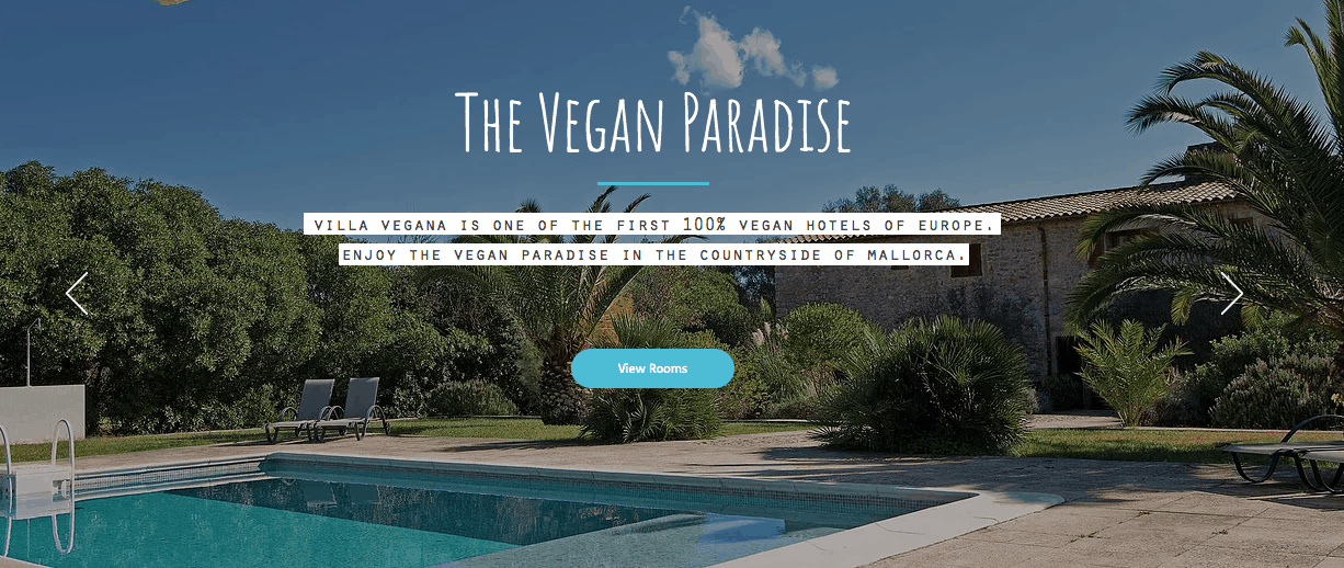 "Screenshot of hotel page showing pool with text ""the vegan paradise"""