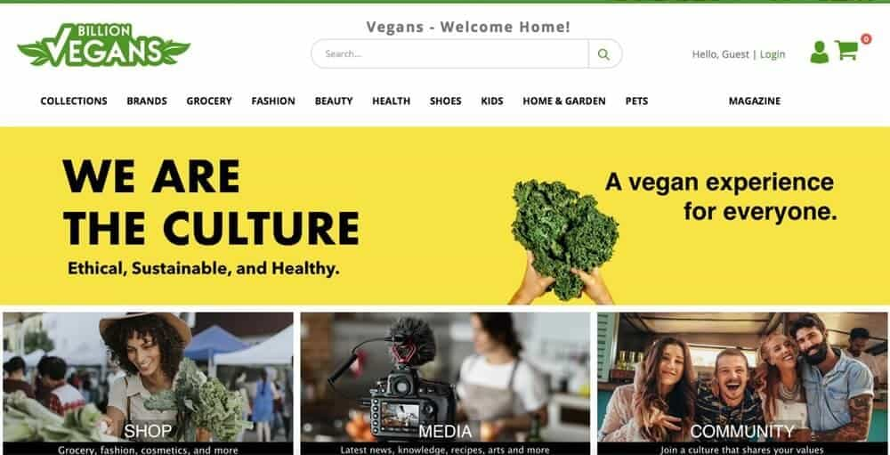 Screenshot of Billion Vegans site showing a woman shopping for vegetables, a camera filming someone and a group of friends embracing