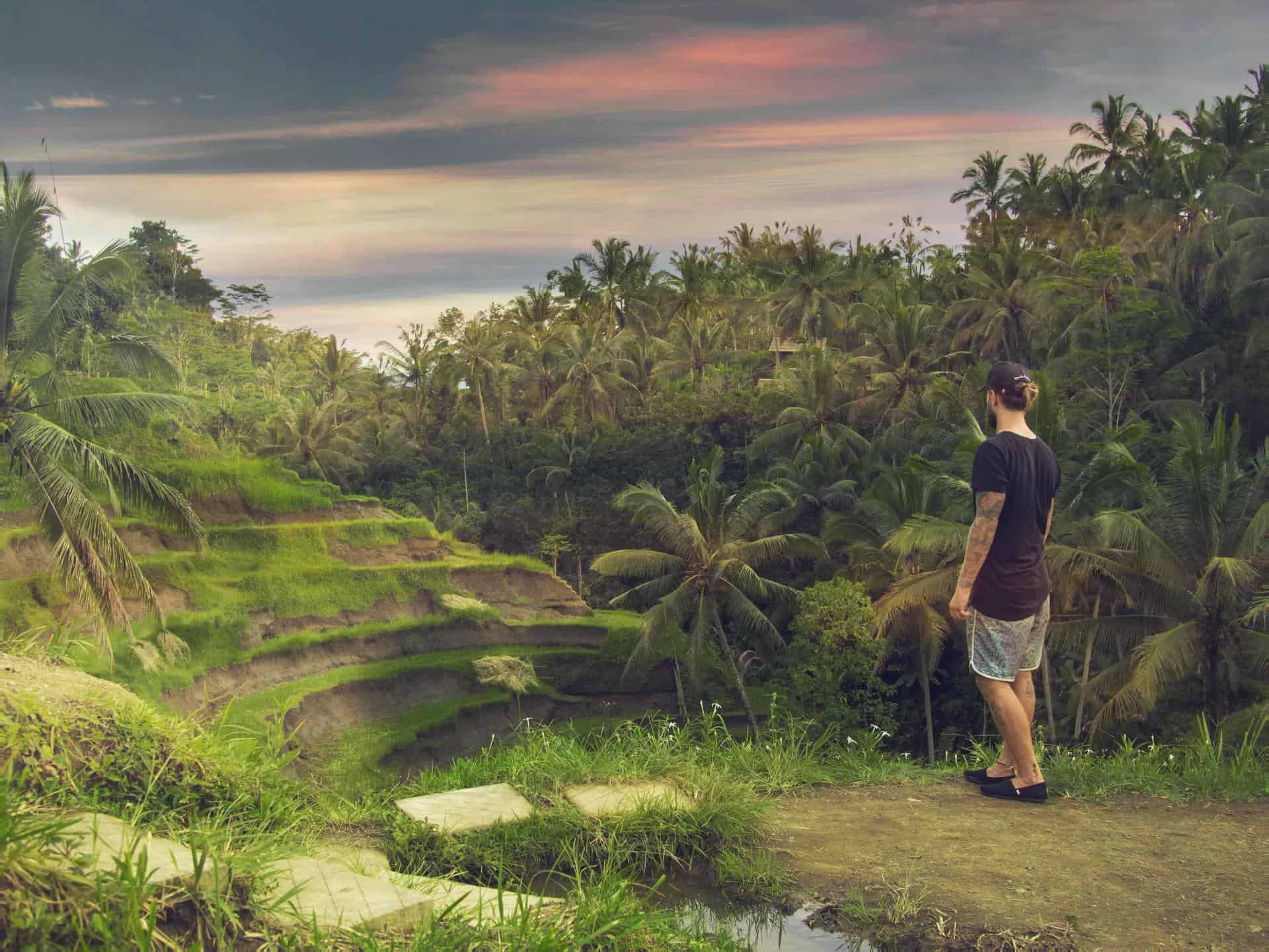 Man looks out over terraced fields